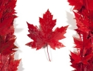 Canadian Visa for 10 Years