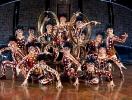 Cirque du Soleil Show Dralion
