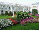 Flower Season Has Opened In Pushkin