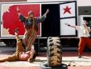Outdoor circus show
