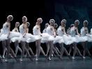 Swan Lake Mariinsky 3D